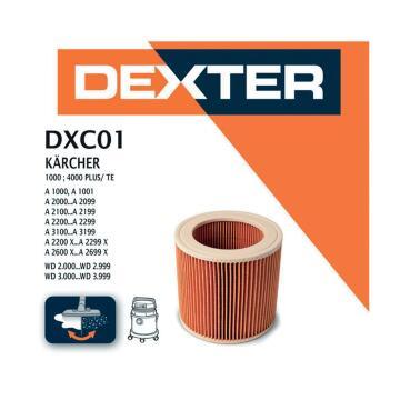 Cartridge filter DEXTER for KARCHER WD2000-3000