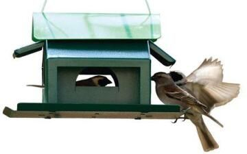 Bird Feeder, Seed Feeder, ELAINES BIRDING, 25cm