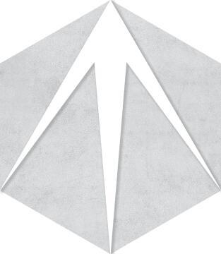 Hexagon Tile Ceramic Trident 220x250mm