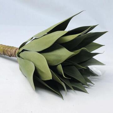 AGAVE PLANT SML 40CM