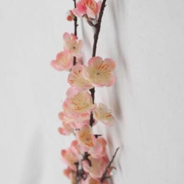 BLOSSOMS PINK 1M