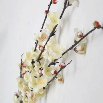 BLOSSOMS WHITE 1M