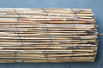 Fence Split Reed Cane NATERIAL 80% 2 m x 3 m