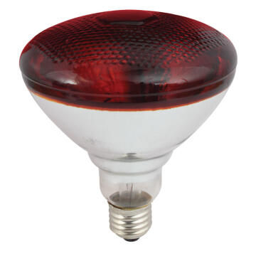 250W INFRARED BROODER LAMP
