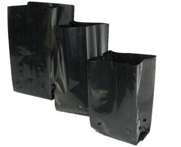 Planting Bag, 11.25liter, KIRCHOFFS, 25 units