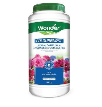Fertiliser, Colourburst Azalea, WONDER, 500g