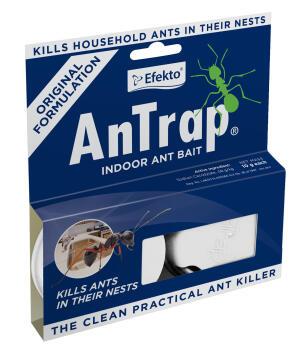Antrap Indoors, Ant Control, EFEKTO, 2 Per Pack