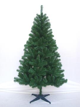 CHRISTMAS TREE COLORADO 150CM (H)