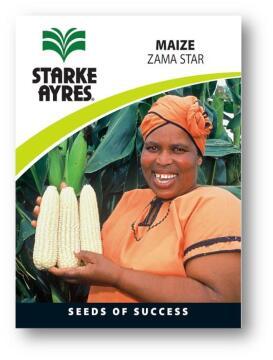 Maize Seed