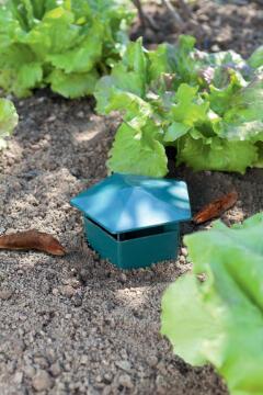 Trap Slugs Nortene 10Cmx12Cm Plastic Green