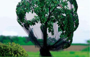 Net Protective Nortene 5Mx6M Humane Solution Against Birds