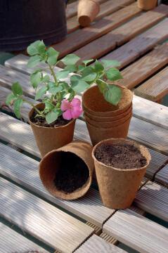 Pot, Biodegradable, NORTENE, 6cmx6cm