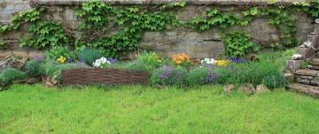 Garden Border Willow 30 cm X 1 m