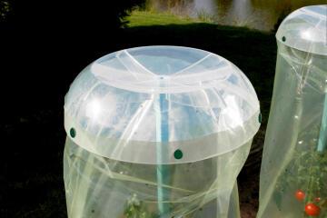 Clip Tomato Nortene 12Mmx20Mm Plastic 25 Units