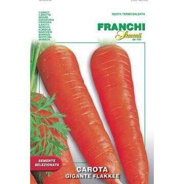 Seed, Carrot Gigante Flakkee, FRANCHI SEMENTI