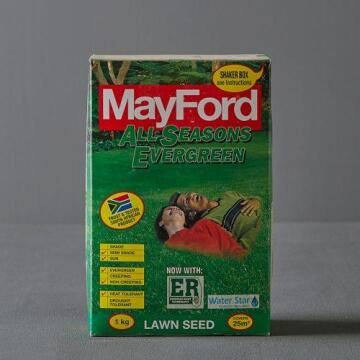 Lawn Seed, All Seasons Evergreen, MAYFORD, 1kg