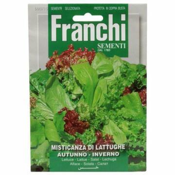 Seed Lettuce/Autumno Inverno