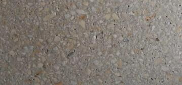 Paver Wild Coast Honed Stone 300 mm Wheat