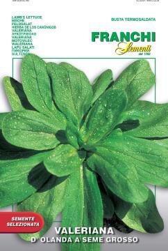 Seed Lettuce/Valeriana