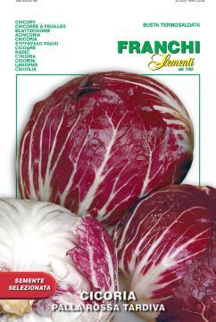 Seed Radicchio/Tardiva