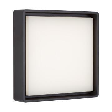 BULKHEAD LED MAXI SQR 22W GRAPHITE
