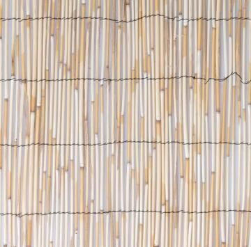 Fence Reed Cane Lowest Price 75% 1 m X 3 m