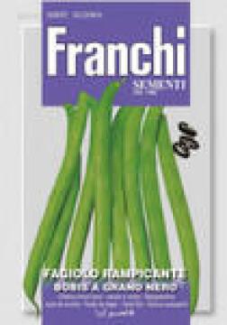 Seed, Bean/ Neckergold, FRANCHI SEMENTI