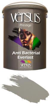 Interior paint VERSUS Anti-Bacterial Everlast 5 litre